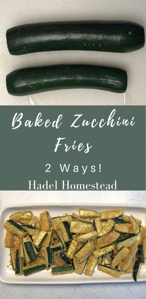 Log In  Hadel Homestead  WordPress Baked Zucchini Fries