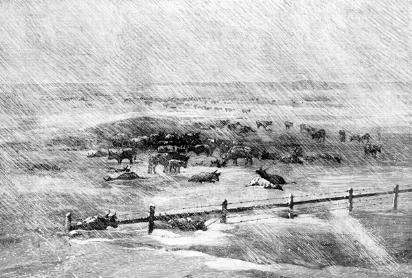 Victorian Blizzards, Nonstop in the 1880s – Kristin Holt   A Blizzard on the Plains, Harper's Weekly, 1886. Image: Wyoming Tales and Trails (dot com)