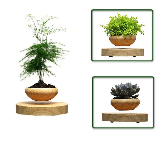 Pot Feur Plante Lévitation Aimant