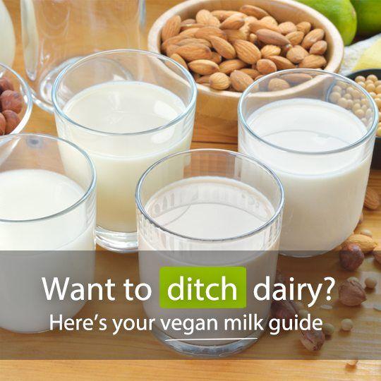 Willst du Molkerei Graben? Hier ist Ihr Leitfaden für vegane Milch …   – Health Tips