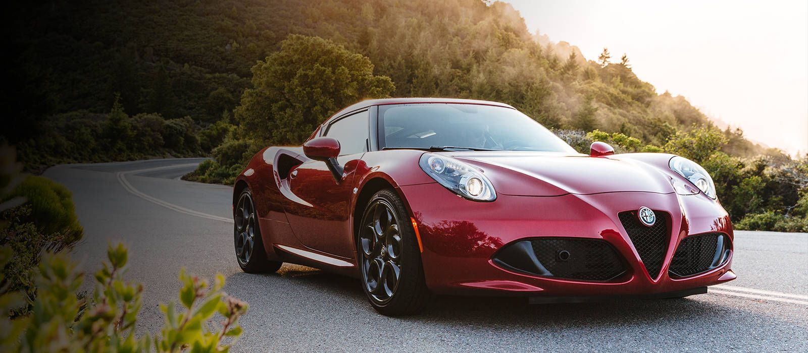 2016 Alfa Romeo 4C Spider Confused about what to Call 1 800