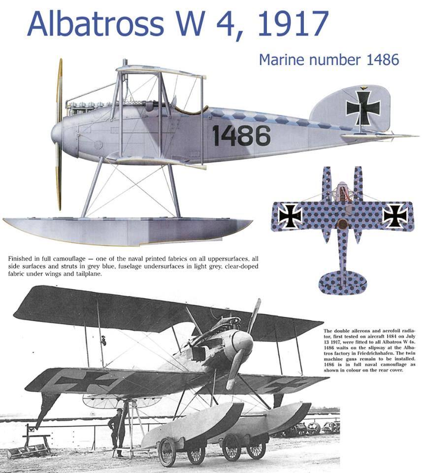 Albatross W 4 1917
