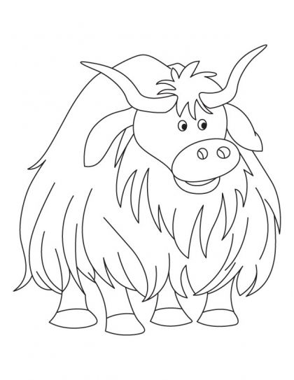 himalayan yak color sheets Cartoon animal yak coloring page