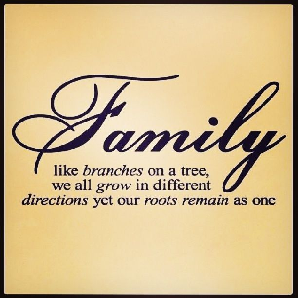 SKECHERSGiveThanksPinTOWin Thanksful for my family always
