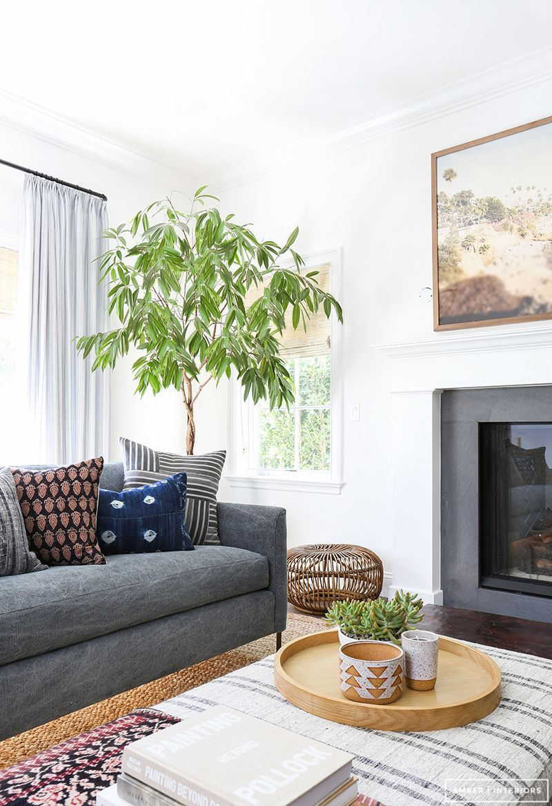 Beautiful indoor tree amber interiors client cool as a cucumber