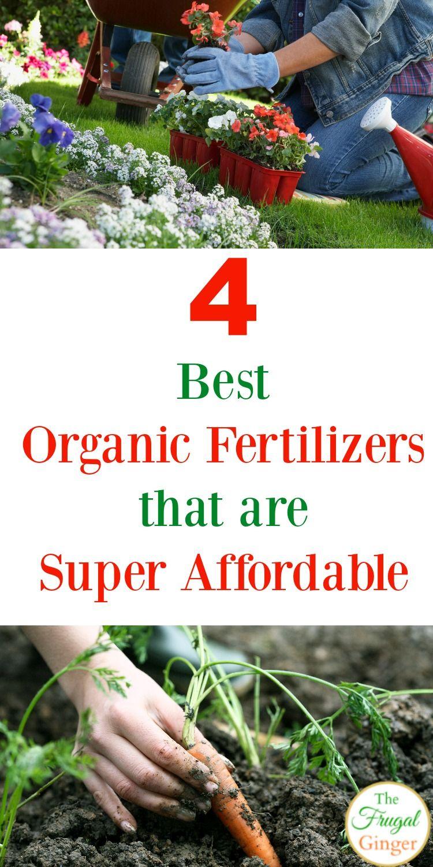 Best Organic Fertilizers for your Garden   Garden Tips