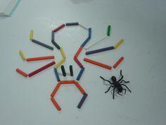 Afbeeldingsresultaat voor woordveld van de spin