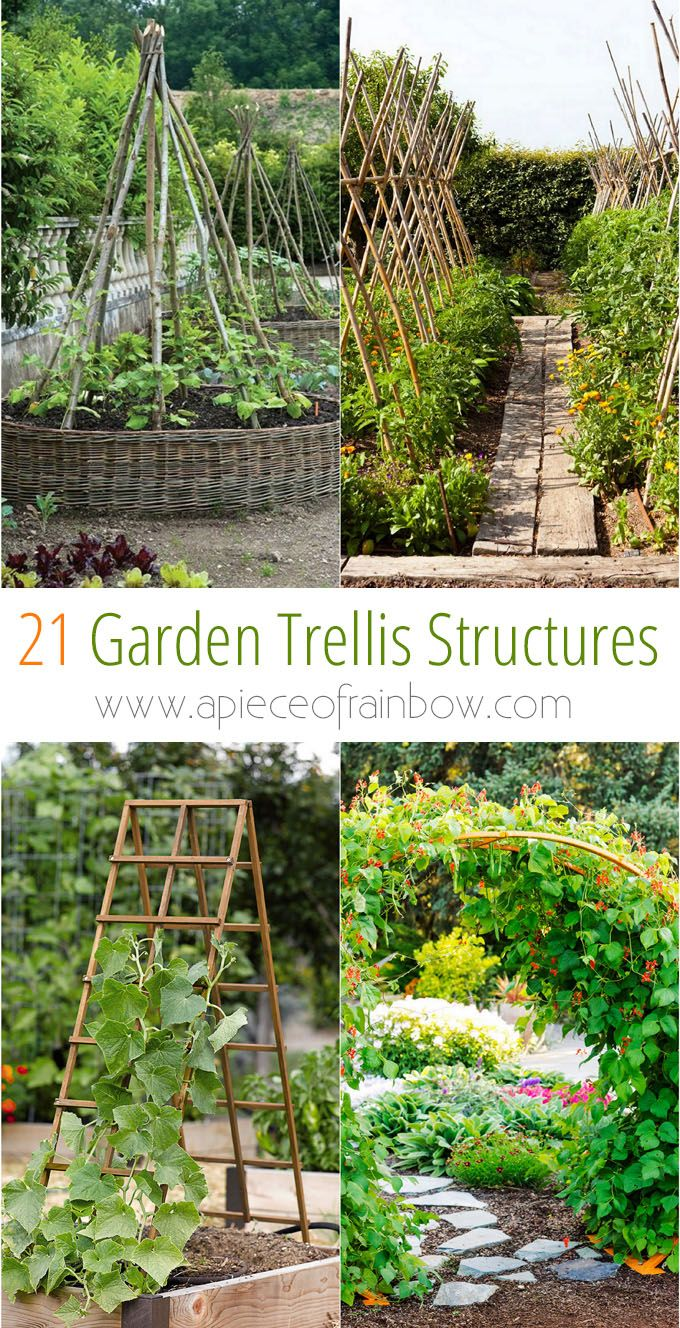 Beautiful Vertical Gardening Trellis Ideas Part - 12: 21 Easy DIY Garden Trellis U0026 Vertical Growing Structures