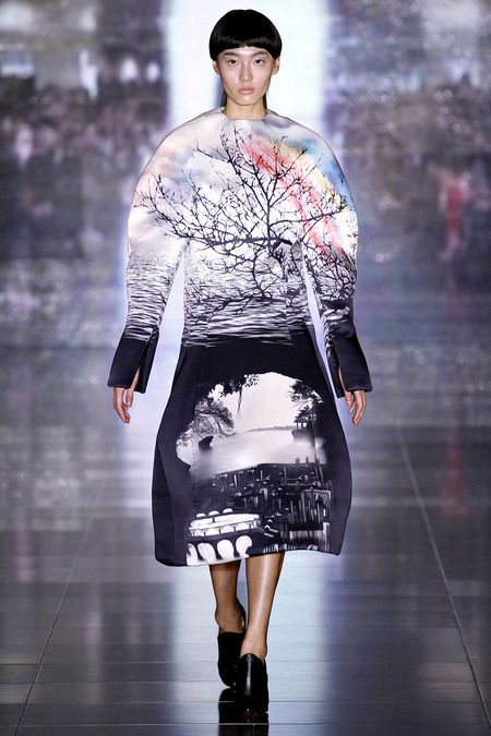 Mary Katrantzou Fall 2013 Ready-to-Wear Collection Dia op Style.com