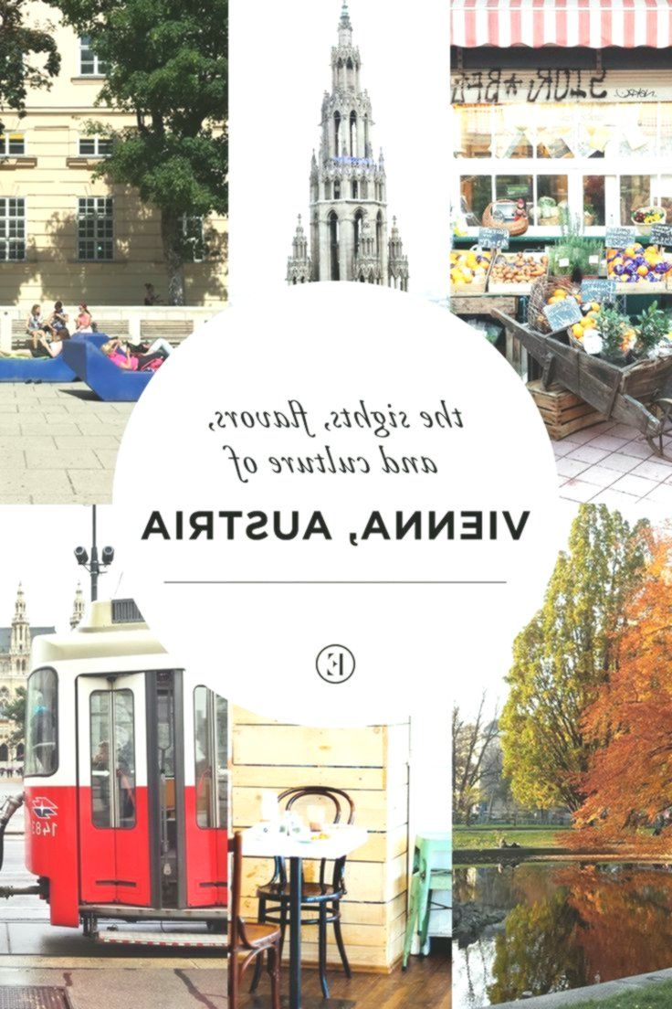 The Sights, Flavors, and Culture of Vienna, Austria