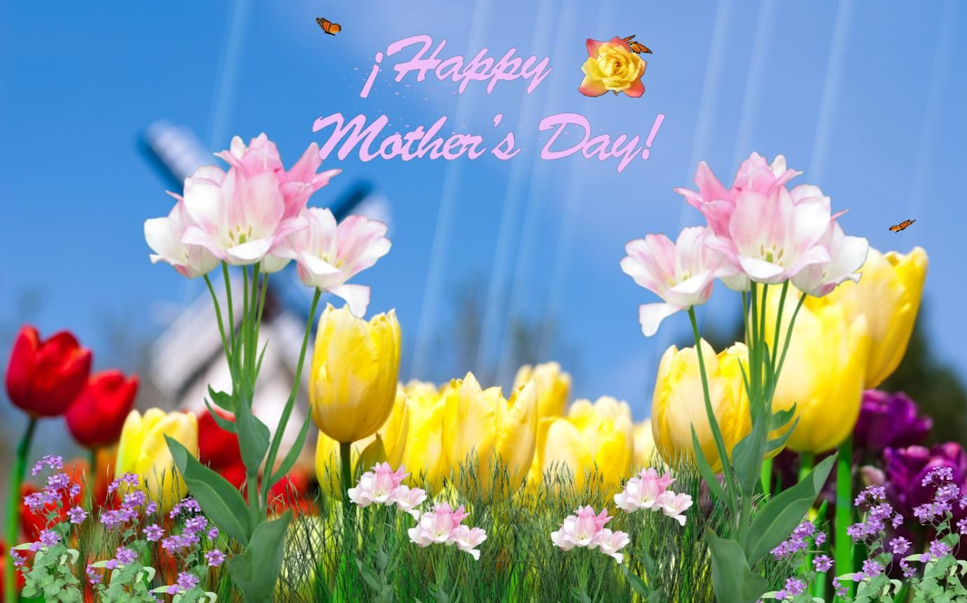 Mothers Day Photos Day Animated Wallpaper Download Screensaver