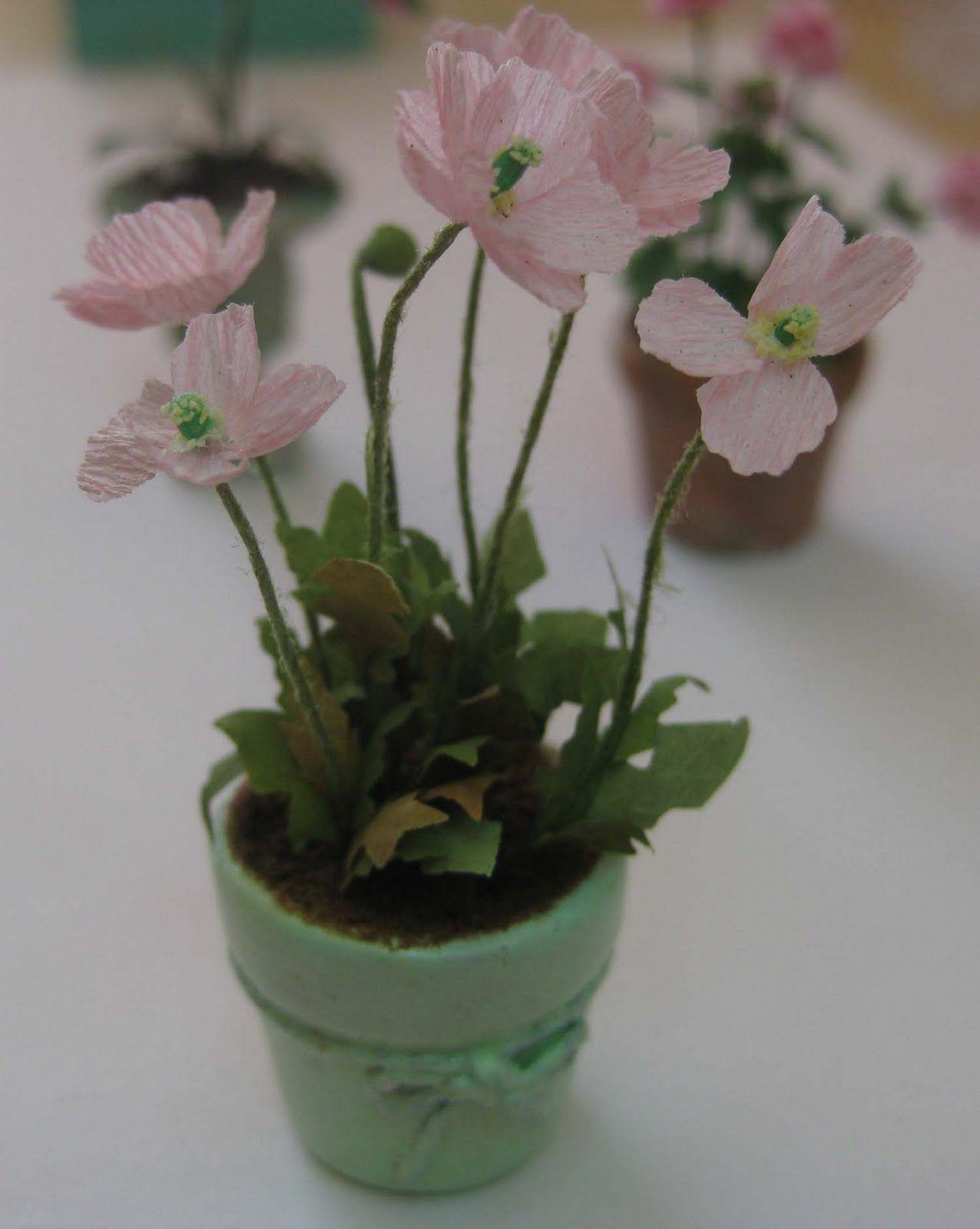 Idea by Nancy Nerswick on Miniature ideas Mini plants