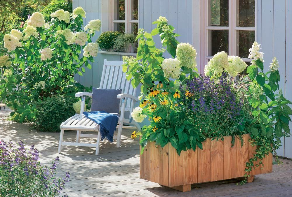 Backyard Deck and Garden Ideas