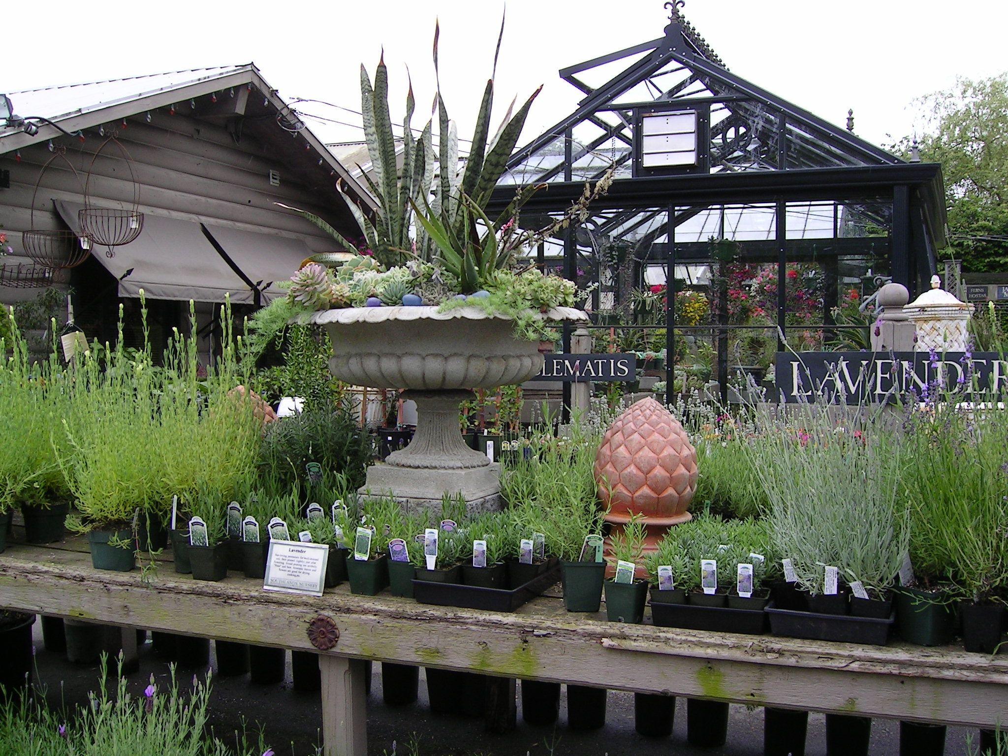 Southlands Nursery Vancouver Garden Center Displays Garden Nursery Garden Shop