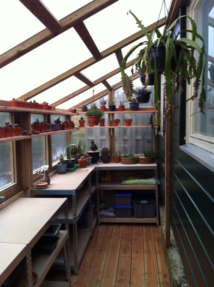 American Woodworker Plans Cacti, Gardens and Green houses - fresh blueprint design wrexham