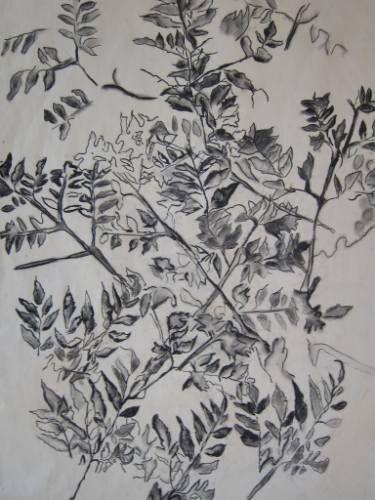 saatchi art trace drawing by adina shpigler kayra