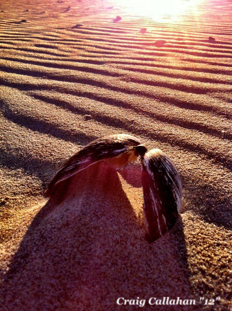 Fall on the beach