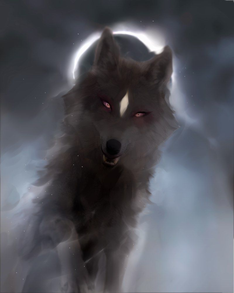 Pin By Nathan Baca On Art Wolf Art Shadow Wolf Fantasy Wolf
