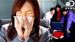 Why You Really Shouldn't Go To Work When You're Sick