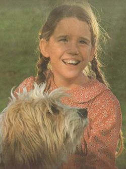 Pin On Little House On The Prairie