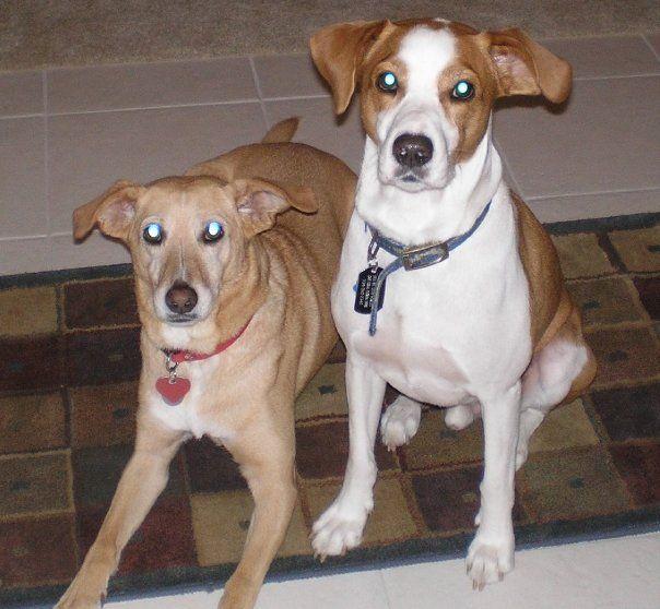 Tess and Benny