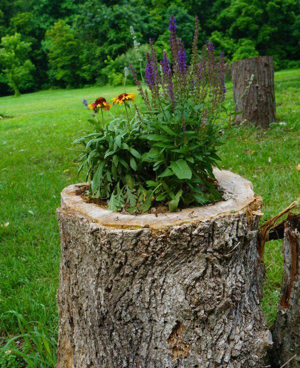 einen originellen pflanztopf aus baumstumpf selber machen pflanzen pinterest garten. Black Bedroom Furniture Sets. Home Design Ideas