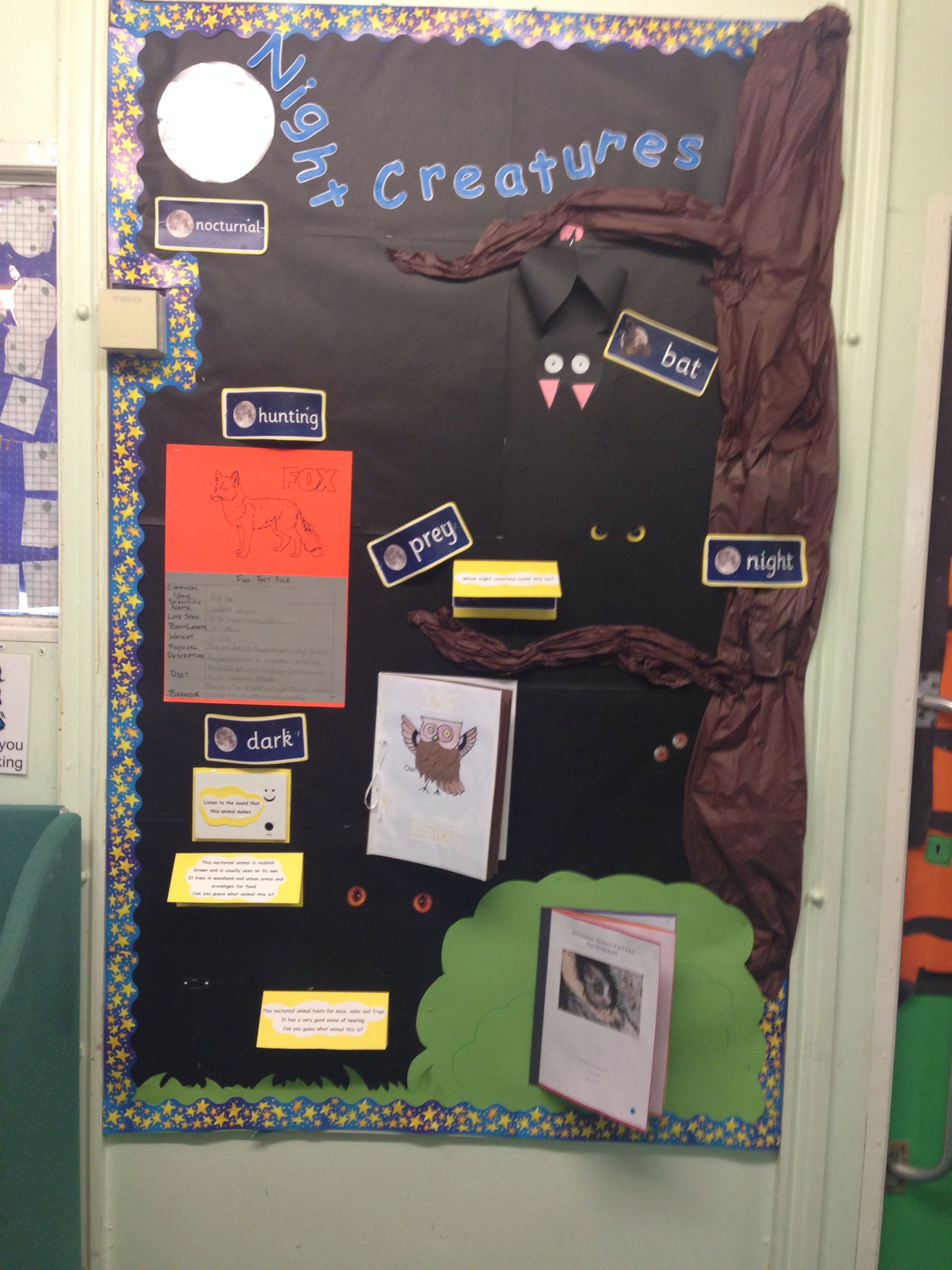 Nocturnal Animals Classroom Display Ks1 Nocturnalanimals