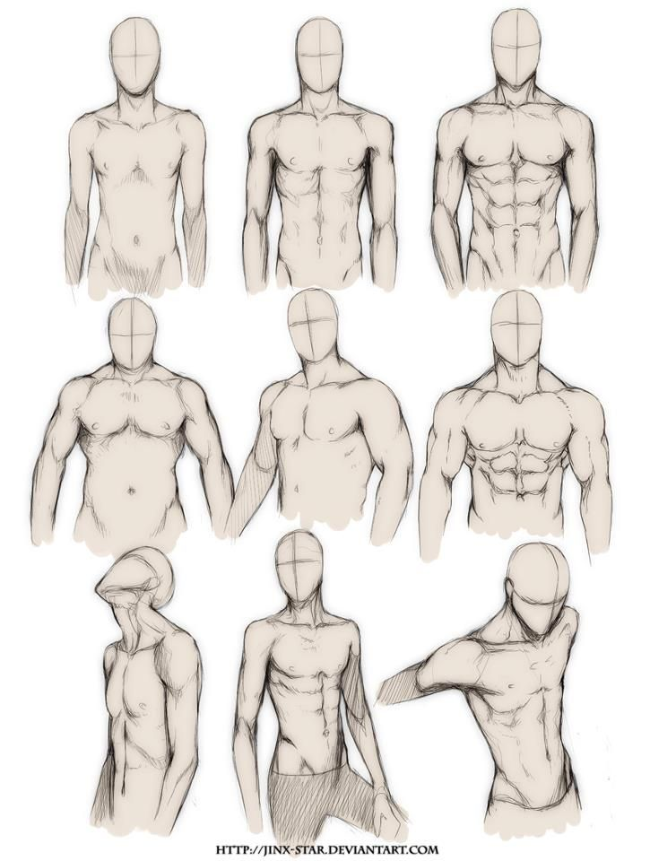 How To Draw The Human Body Study Male Body Types Comic Manga Character Sketches Drawings Figure Drawing Reference