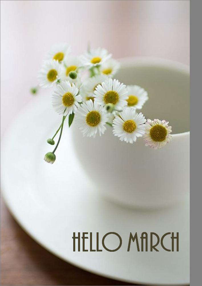 Hello March... hello spring!!!