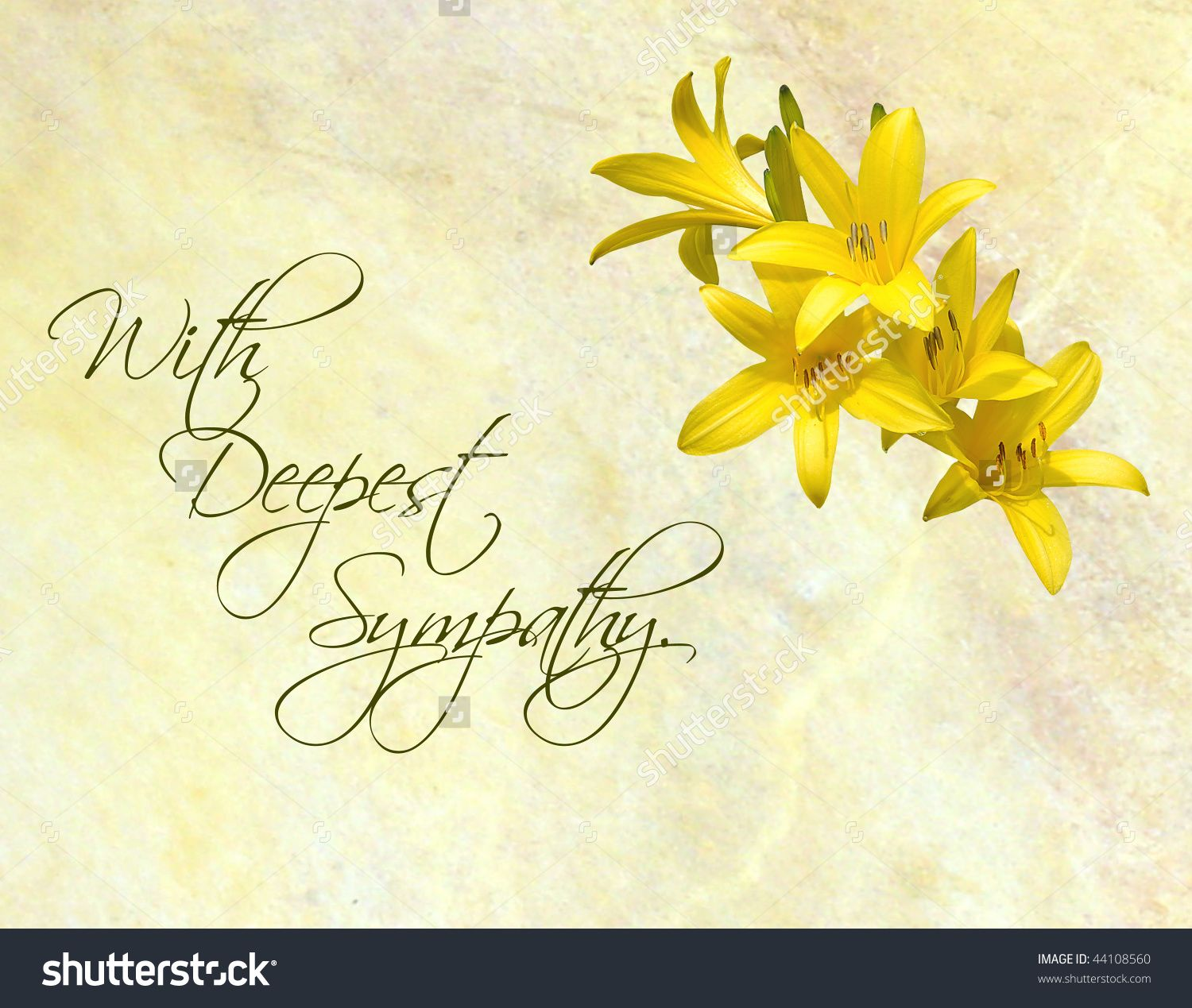 Stock photo sympathy card featuring pretty day lilies on a yellow stock photo sympathy card featuring pretty day lilies condolence messagescondolencessympathy greetingssympathy kristyandbryce Choice Image
