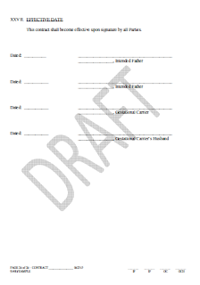 simple contract agreement pdf, sample contract agreement