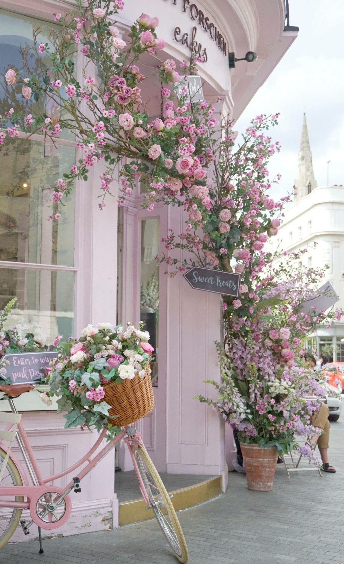 Pin By Sawsan Ali On Fancy Pinterest Flowers Beautiful And Pink