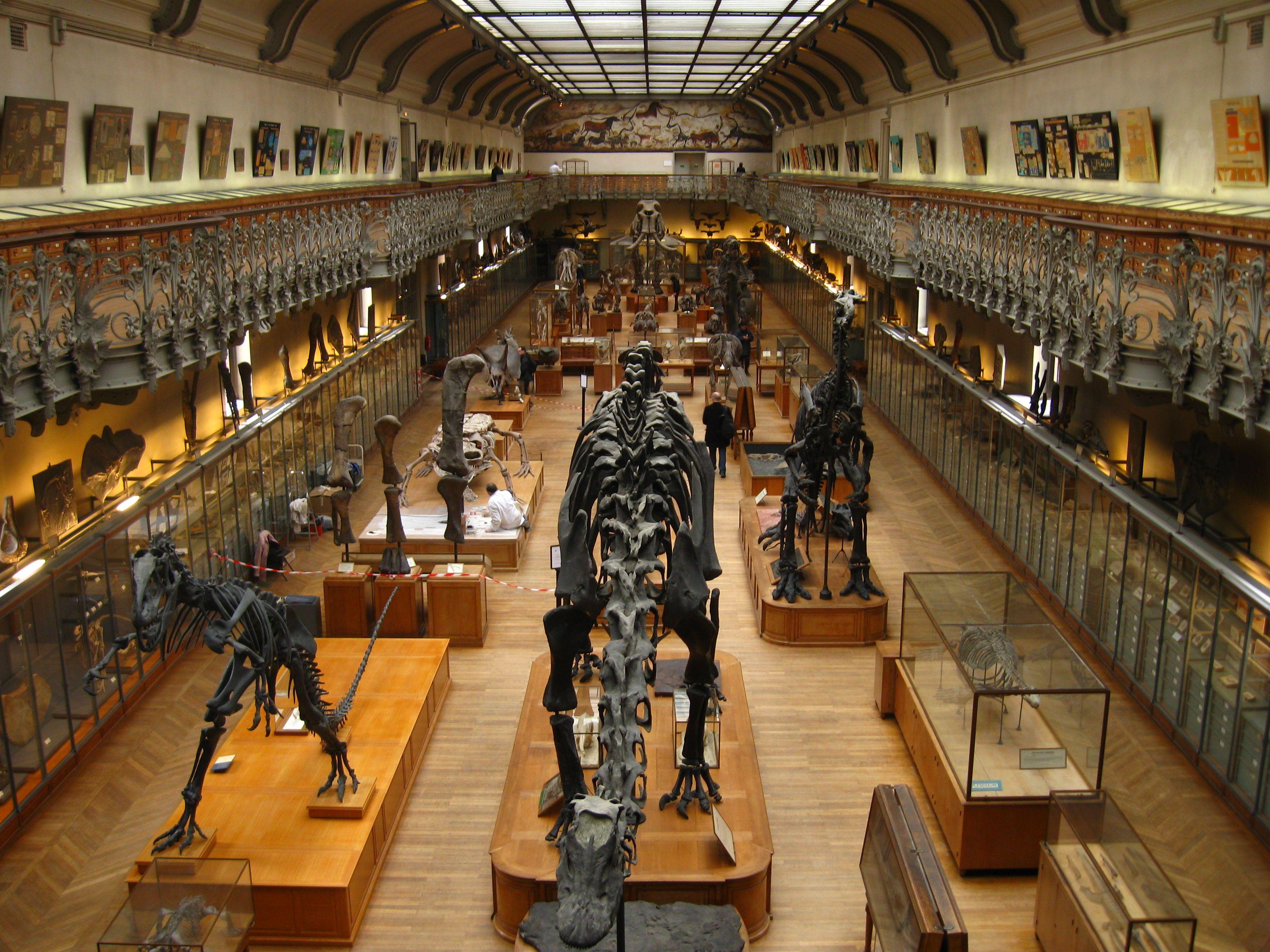 bastille museum in paris france