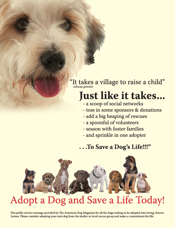It Takes A Village To Save A Dog S Life Save A Dog Dog Adoption Really Cute Puppies