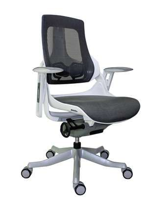 Chic! Eurotech WAU Mesh Mid Back Chair.  Multiple adjustments to fit you.   $401.0