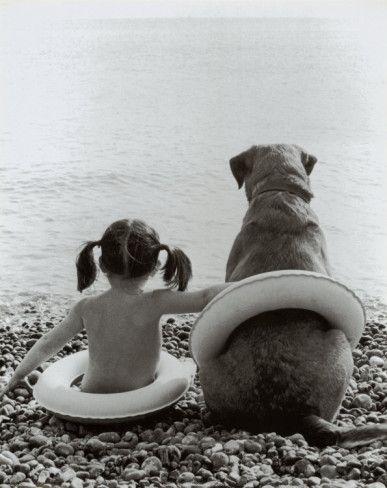 Animal Odd Couples Pinterest Dog Diamond And Illustrations