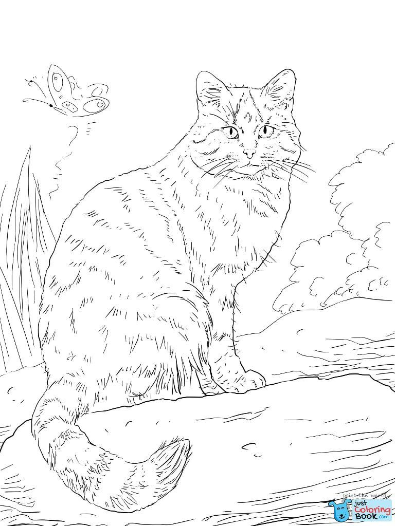 Wild Cat Coloring Page