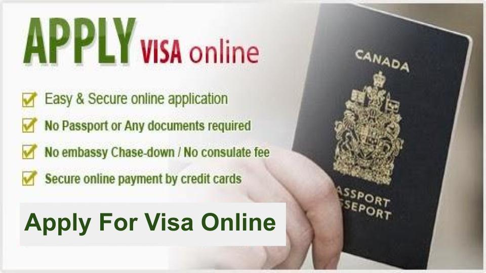 Buy Schengen Visa Online Visa online, How to apply, Visa