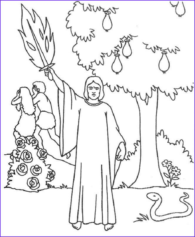 Garden Of Eden Coloring Pages Catholic Faith Education May 2012