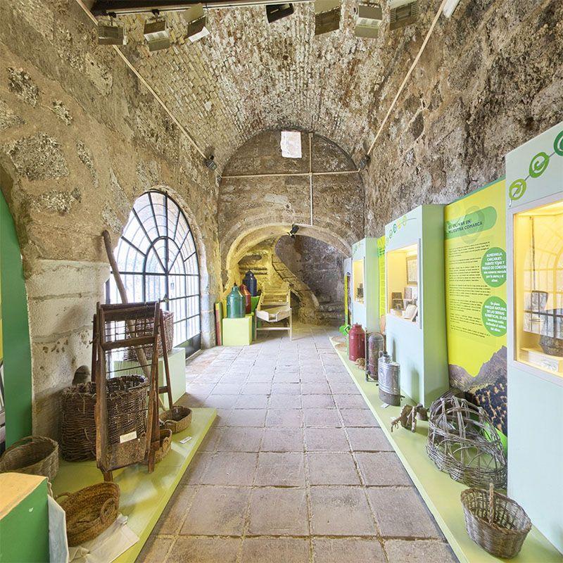 Carnicerias Reales.- Fotografia del nivel inferior que es donde se sacrificaban las reses. Al final del pasillo esta la destacable escalera en espiral que comunica con el este nivel.