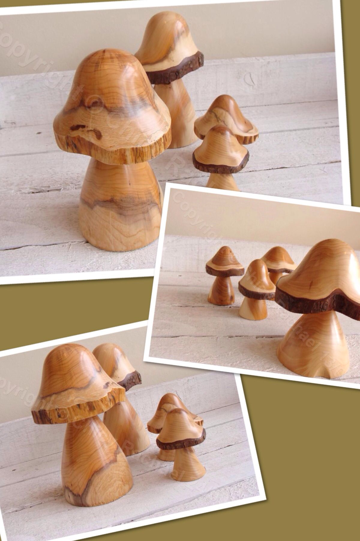 selection of yew mushrooms from £8.50-£18.00 www.chicyrachael