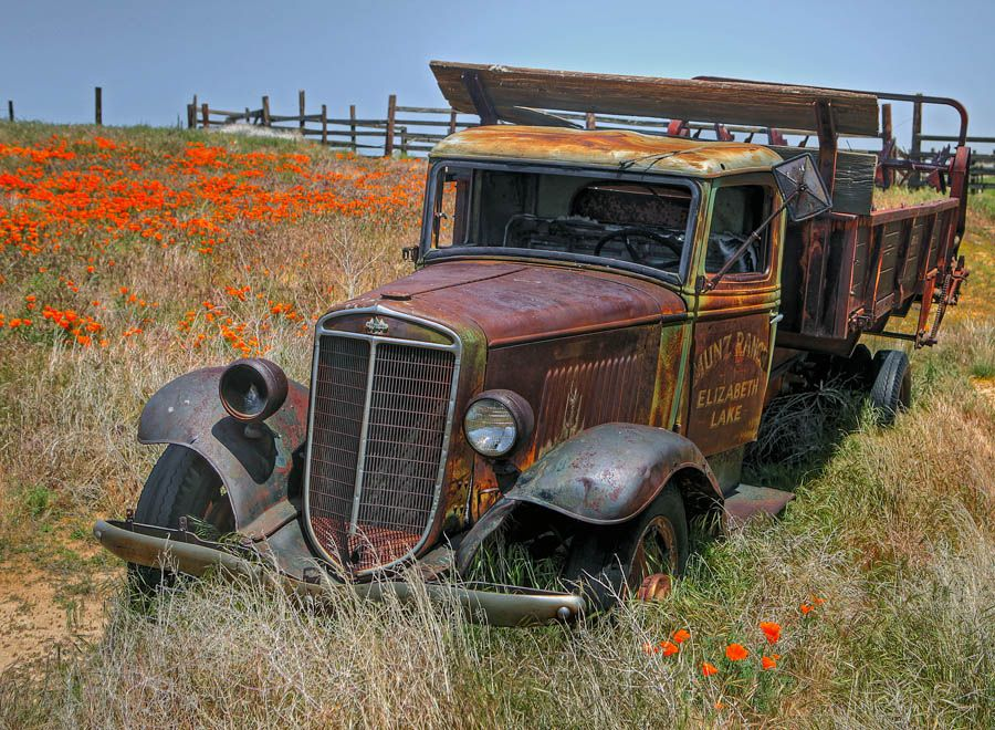 In Poppy Fields Lancaster Ca With Images Farm Trucks Old