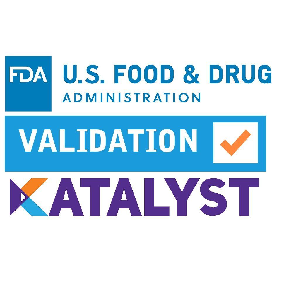 February    Validation Lead  Job Description Validation