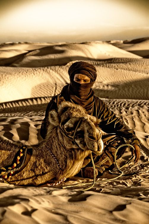 Pin By Emeterio Mantecon Siller On Inspiration Egypt World Cultures Camels