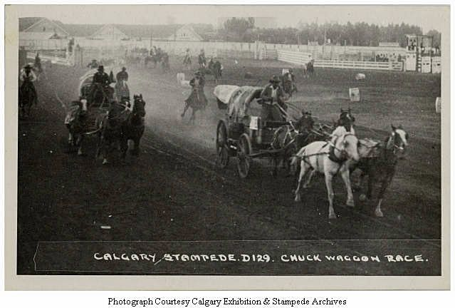 chuckwagon races in 1932. (With images) Horses, Racing