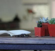 DIY Projects: Gardenista