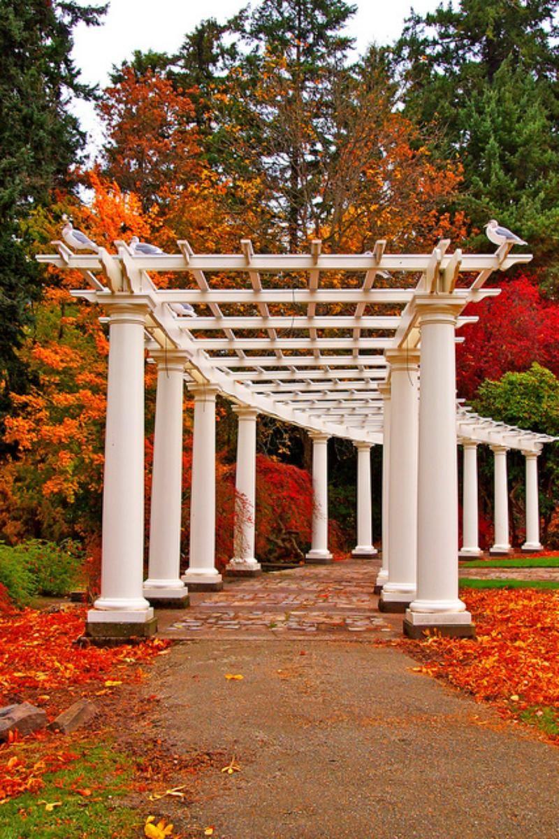 Wapato Park Pavilion | Old City Park Images | Pinterest | Pavilion ...