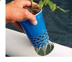 A soldering iron was used to make these homemade netted pots. Plastic fumes are very toxic. If you try this, make sure it is in a well ventillated area! #AquaponicsandHydroponics