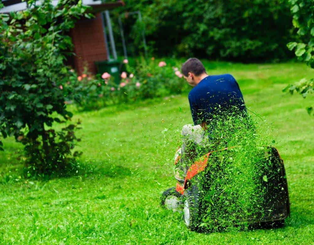 The 6 Best Riding Lawn Mowers In 2019 Expert Reviews Lawn Care Spring Lawn Care Landscaping Tips