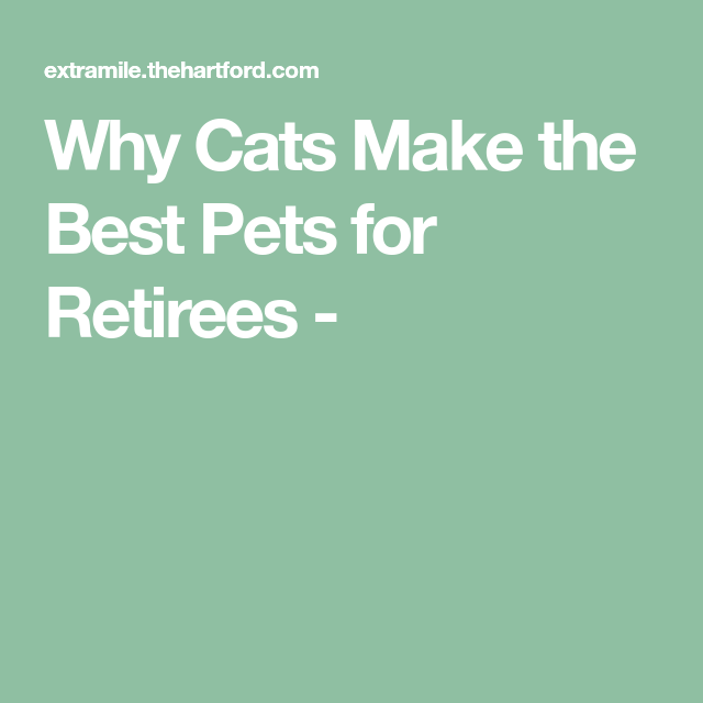 Why Cats Make the Best Pets for Retirees Pets, Cats